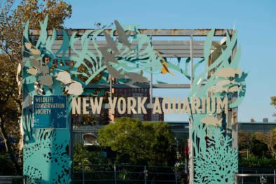 Coney Island Wonderland Brooklyn New York. Typography Impressions. Quest - Im Wandel Der Zeit. Oliver Lins